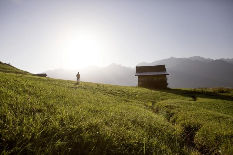 Nordic Walking Sommer Wiese